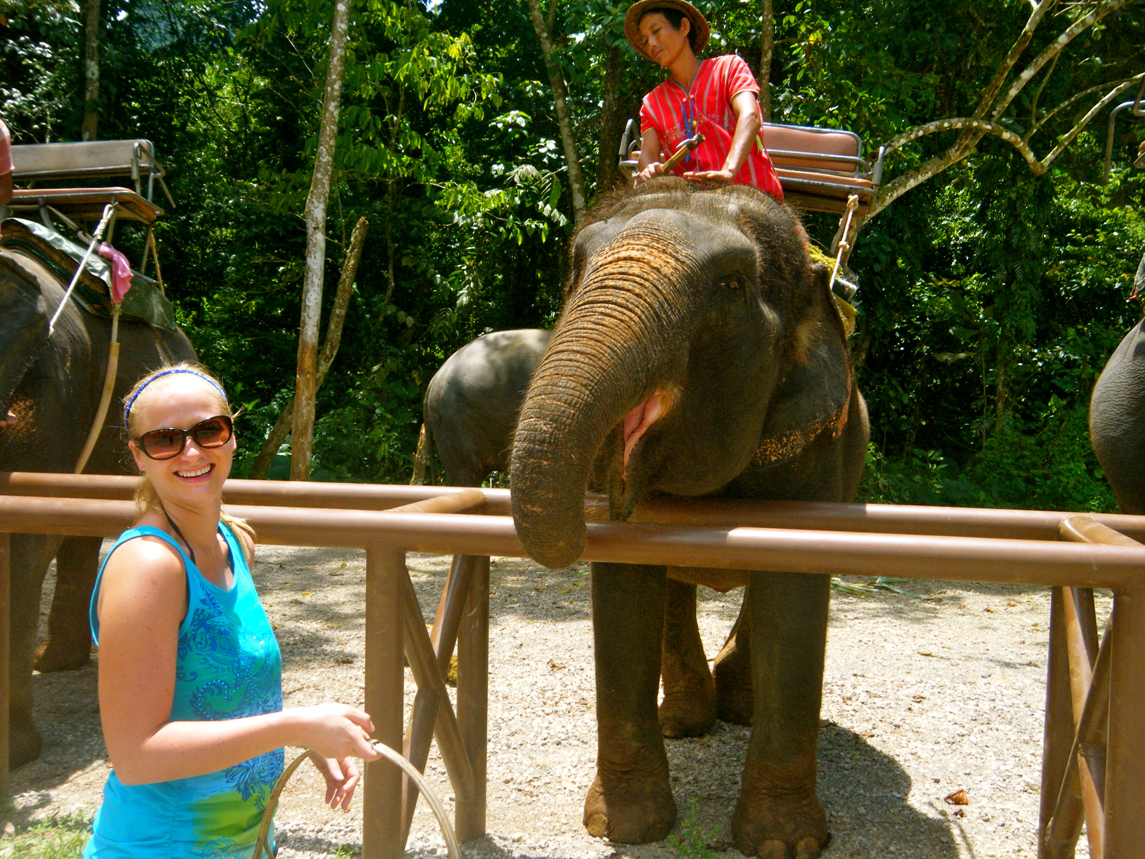 Elephant Trekking in the Rainforest {Thailand Recap}