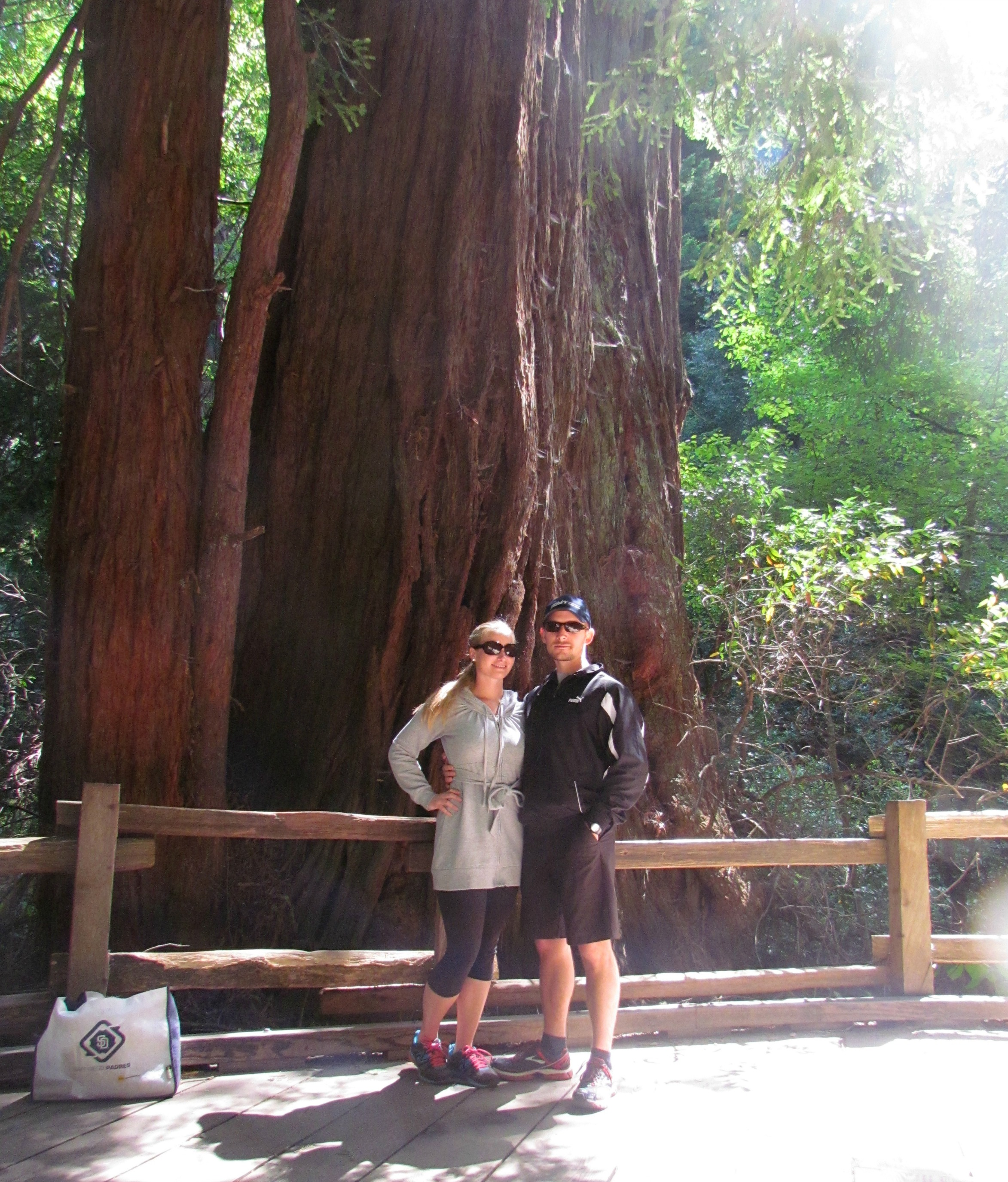 Muir Woods National Monument, Mill Valley