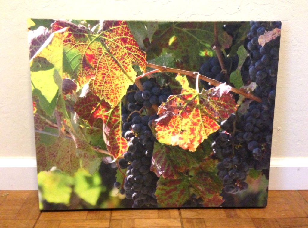 grapes-canvas