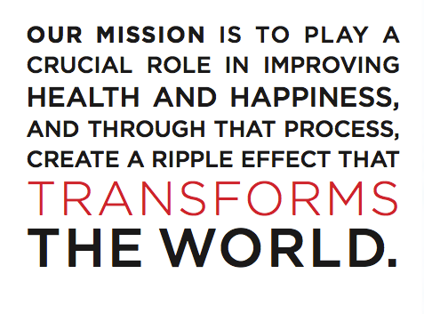 The IIN Mission Statement