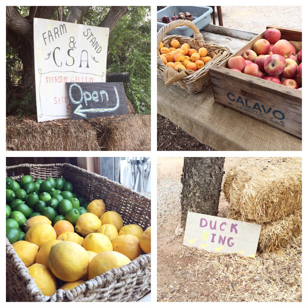 Couple Berry Farm Stand