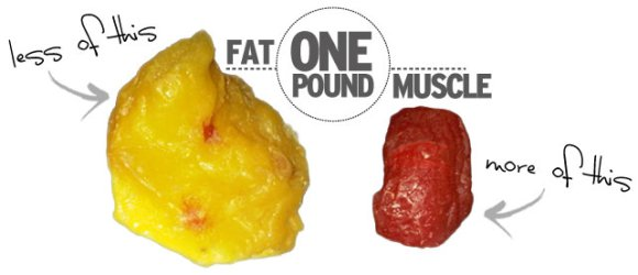 one pound graphic