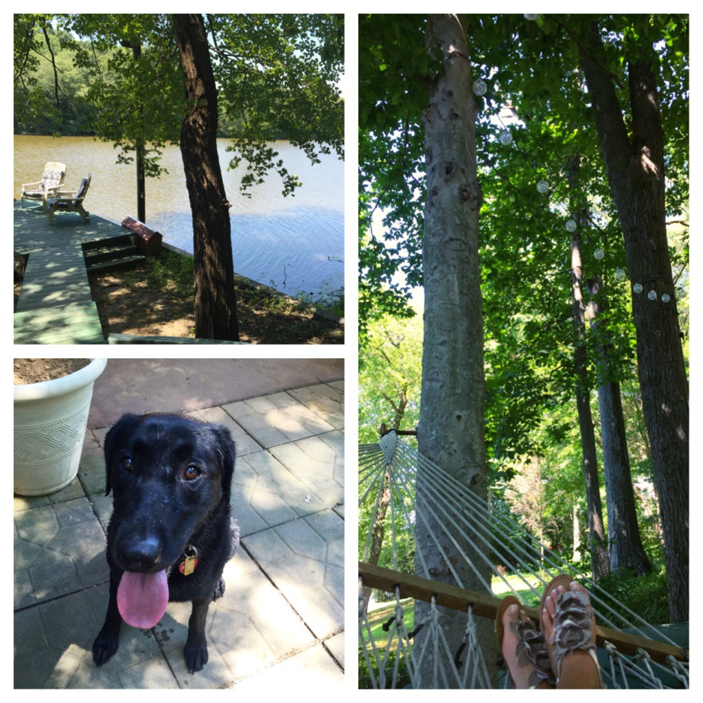 Relaxing in my father-in-law's backyard & playing with his black lab