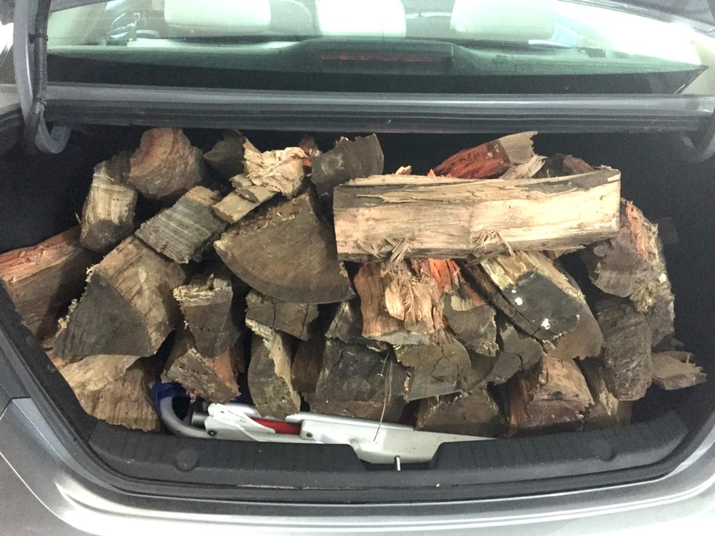 trunk of fire wood