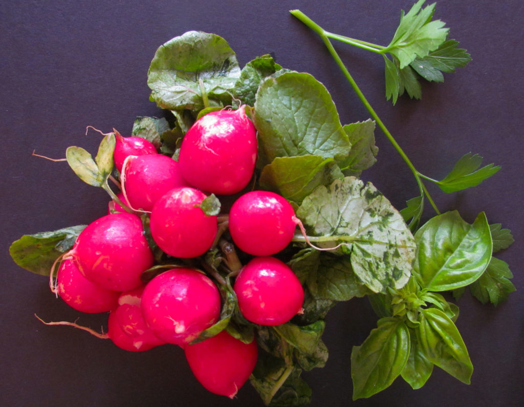 radishes-and-herbs